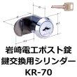 画像1: 岩崎電工ポスト錠(新型)用の鍵交換 (1)
