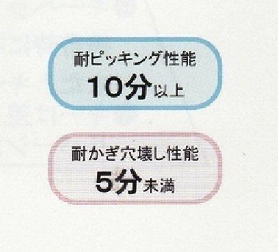 画像3: エージェント,AGENT MIWA,GOAL取替用シリンダー LS5